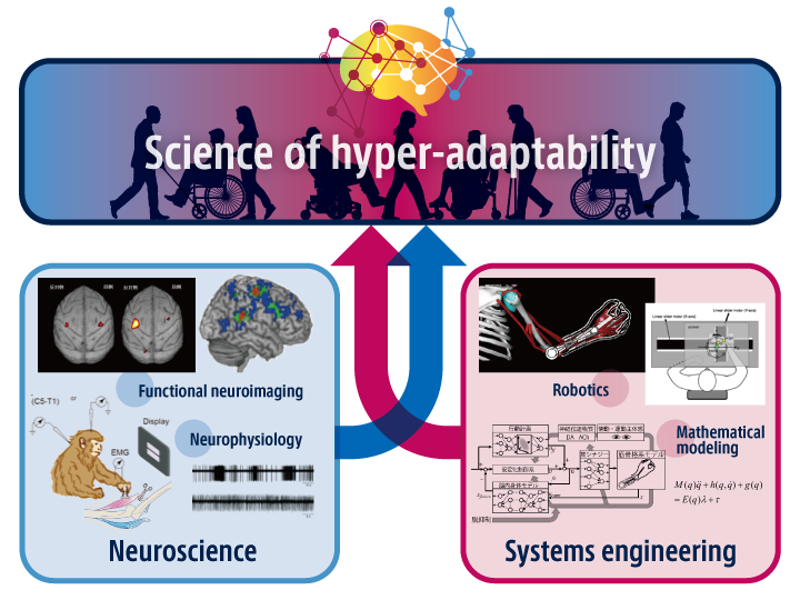 Science of hyper-adaptability